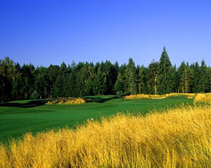 The Reserve Vineyards Golf Club