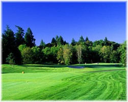 The Reserve Vineyards golf package